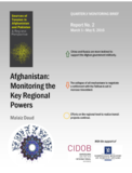 Afghanistan: Monitoring the Key Regional Powers. Report 2