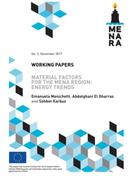 Material Factors for the MENA Region:Energy Trends