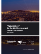 """Wise Cities"" in the Mediterranean?. Challenges of Urban Sustainability"